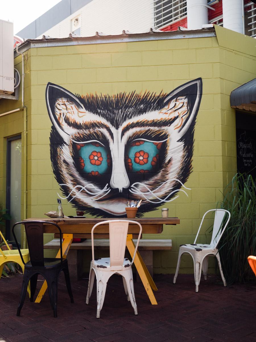 Alley Cats Darwin new menu